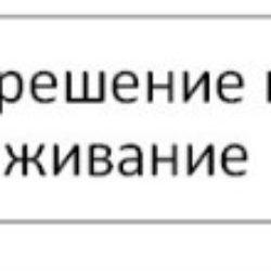 РВП гражданам Таджикистана в России 2020: как правильно оформить и получить